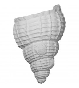 "EM-SCO10X05X12AS - 10 1/8""W x 5 1/2""D x 12 1/2""H Sea Shell Wall Sconce"